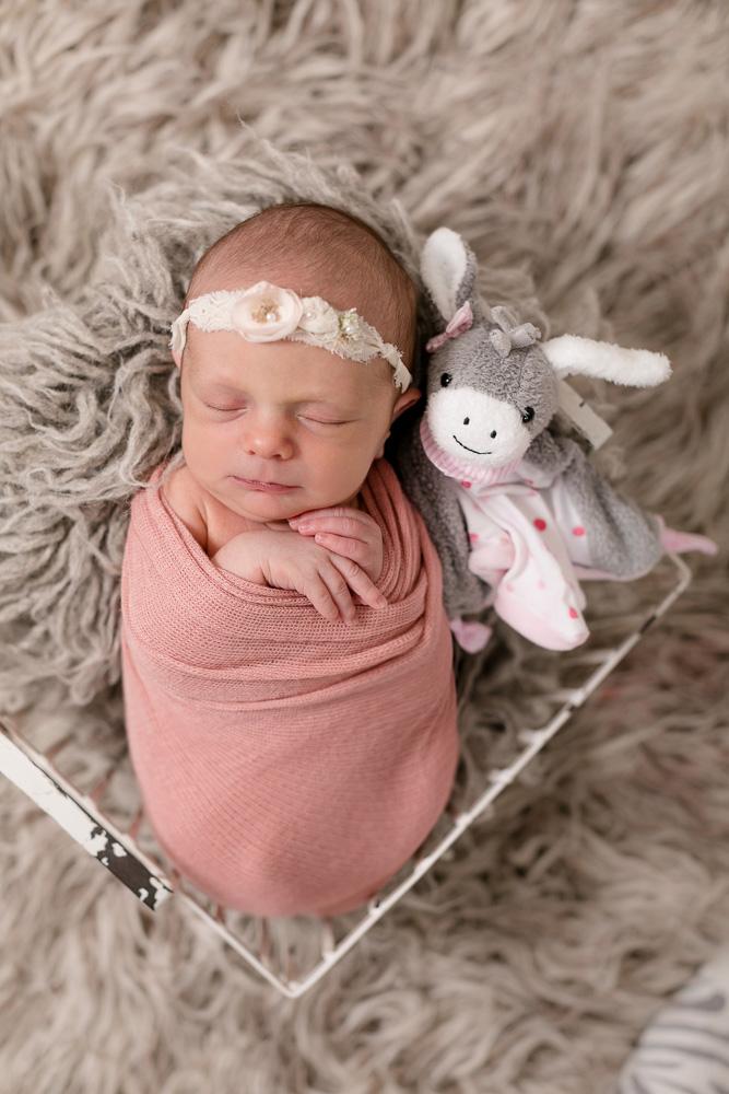 Babybilder Dresden Neugeborenenfotos Linda Roeck