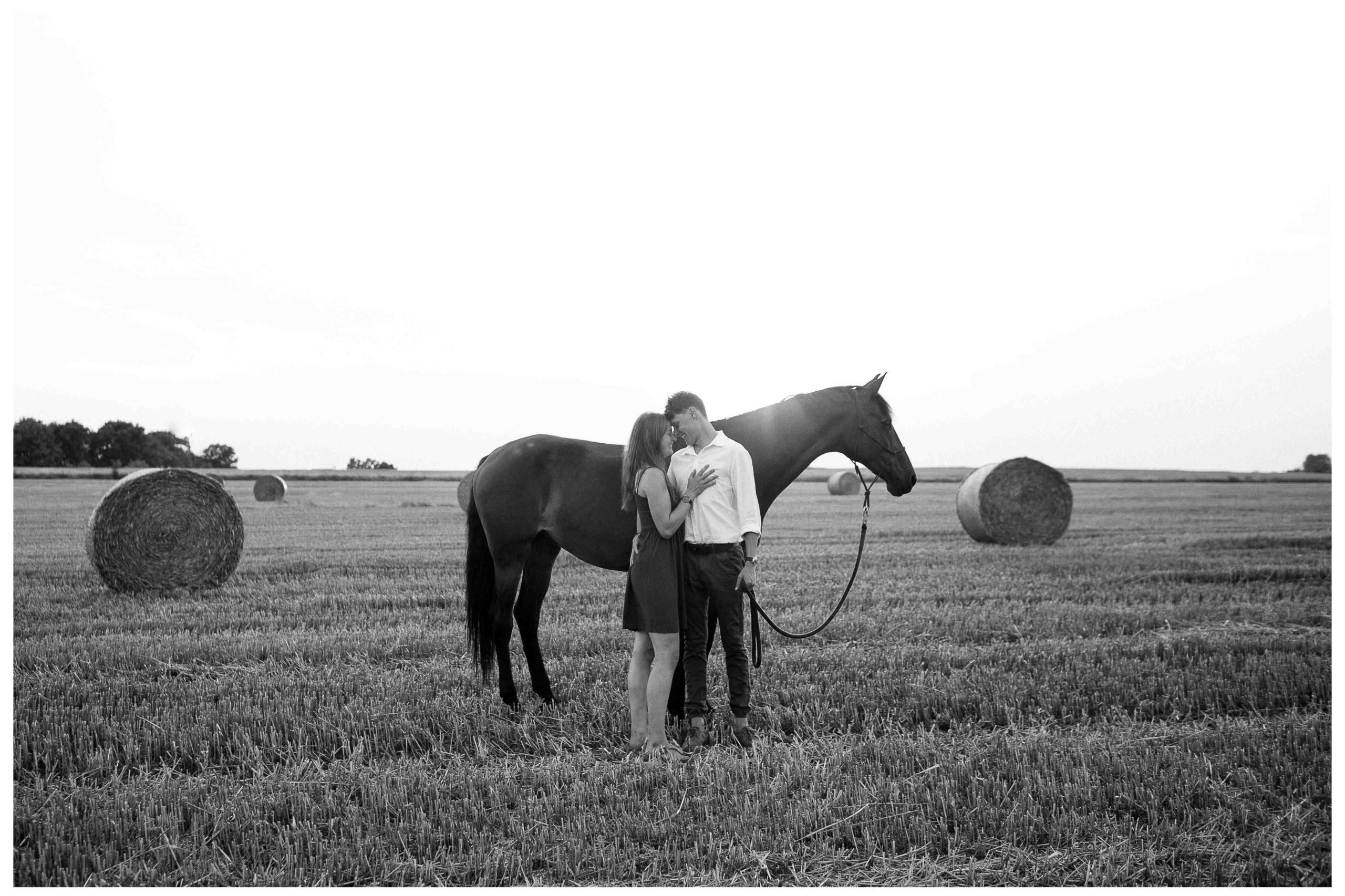 Fotograf Paarshooting Dresden Pferd Linda Roeck